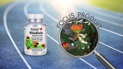 Focus produit sur le produit Rhodiola PhytoComplex (Rhodiola rosea) de Nutrixeal.