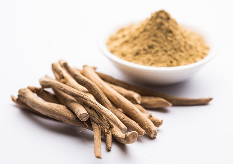 L'extrait Nutrixeal est exclusivement issu de racine d'ashwagandha.