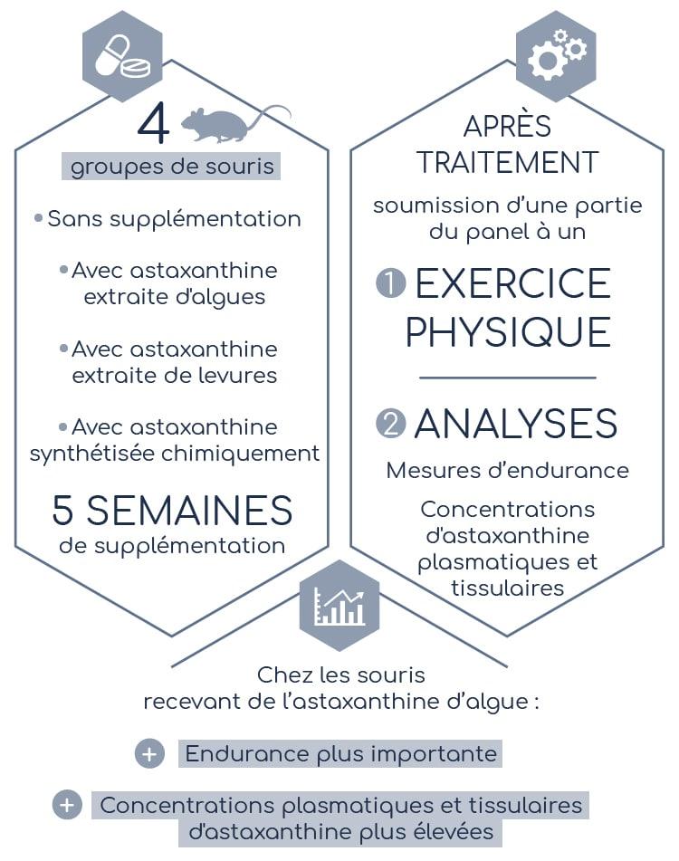 Résultats de l'étude comparative sur l'astaxanthine présentée par Nutrixeal sport Info.