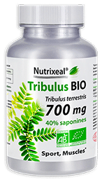 Le Tribulus terrestris BIO Nutrixeal est hautement concentré en actifs : 700 mg par gélule végétale.